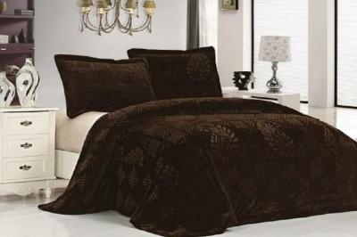 Wrap Plain Single Quilts & Comforters Brown