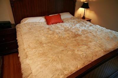 Deluxe Comfort Plain