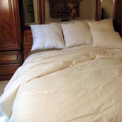 Bio Sleep Concept Plain