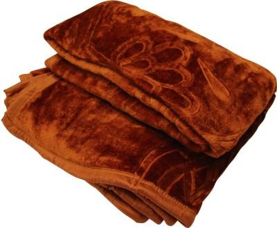 Brndey Floral Single Blanket Brown