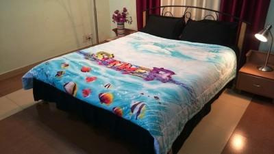 Jojo Designs Cartoon Double Quilts & Comforters Blue