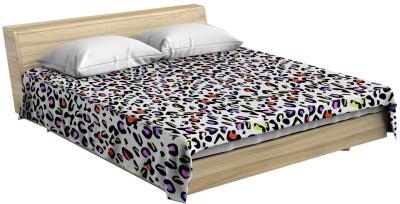Stole & Yarn Animal Single Blanket Multicolor