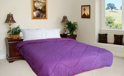 Snuggle Polka Double Quilts & Comforters Purple