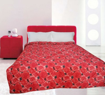Snuggle Floral Single Quilts & Comforters Red
