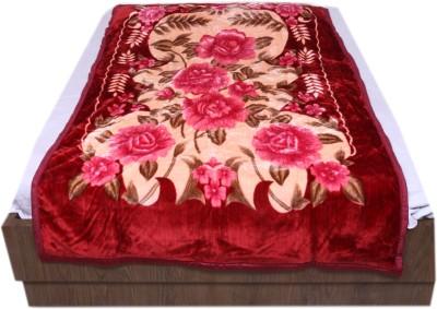IndiStar Floral Single Blanket Maroon