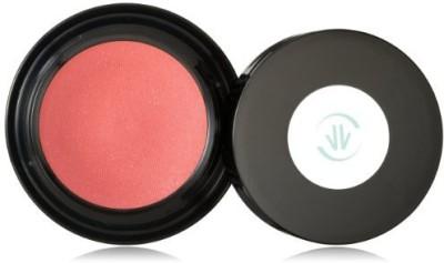 VINCENT LONGO Water Canvas Blush, Aqua Crimson