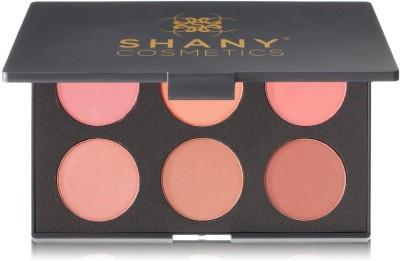 SHANY Fuchsia 6 Color Blush Palette