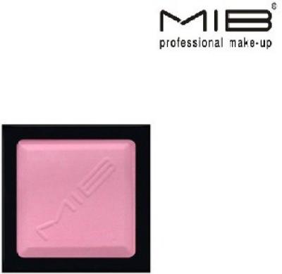 Mib Refill Blush for Makeup Assortment No 02