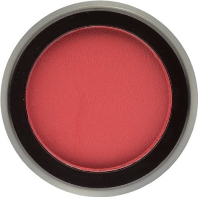 Bodyography�� Pure Pigment Expressions Eye Shadow District (4101)