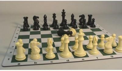 Worldwise Imports Tournament Men And Mat Chess Set4