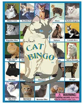 Lucy Hammett Games Cat Bingo Board Game