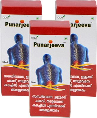 Punarjeeva Ayurvedic Pain Relief Oil