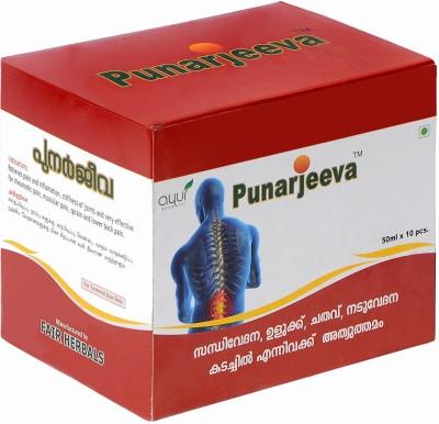 Punarjeeva Ayurvedic Pain Relief Oil(500 ml)