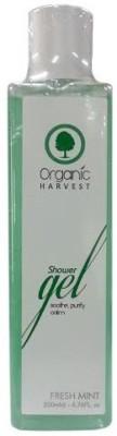 Organic Harvest Shower Gel Fresh Mint