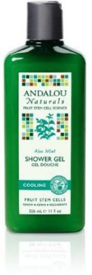 Andalou Naturals Cooling Aloe Mint