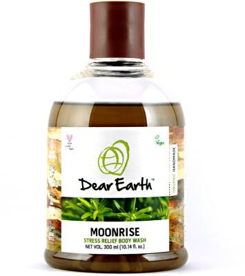 Dear Earth Moonrise Stress Relief
