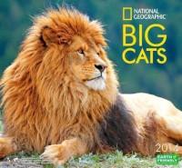 Big Cats price comparison at Flipkart, Amazon, Crossword, Uread, Bookadda, Landmark, Homeshop18