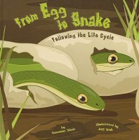 From Egg to Snake: Following the Life the Cycle (Amazing Science: Life Cycles)