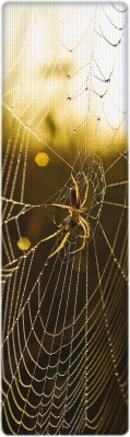 That Company Called IF National Geographic - Spider on Web 3D Bookmark