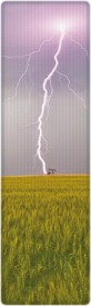That Company Called IF National Geographic - Lightning Bolt 3D Bookmark