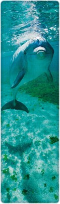 That Company Called IF National Geographic - Bottlenosed Dolphin 3D Bookmark