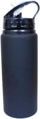 Phoenix Sport Matte 600 ml Bottle