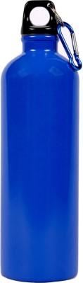 Synergy G SGFLB 750 ml Flask