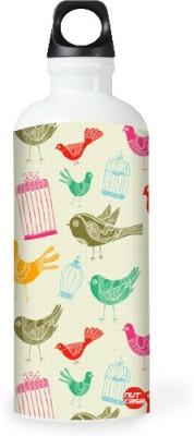 Nutcase Sticker Wrap Design - Birds Vintage 800 ml Bottle