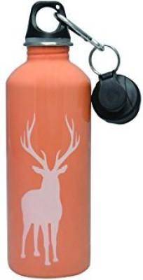 Cheeki 503 ml Water Purifier Bottle(Peach)