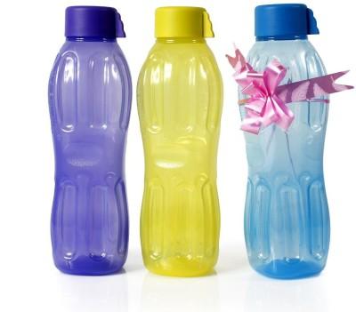 Signoraware Aqua Fresh 1 L Bottle