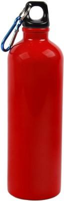 Synergy G SGFLR 750 ml Flask