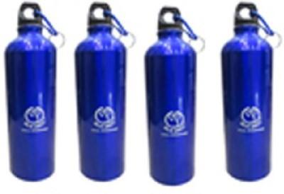 Blue Birds USA Homeware Aluminium 750 Bottle