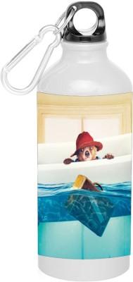 BSEnterprise Drowning 600 ml Sipper