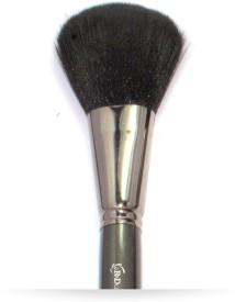 Ignites Powder Brush xl