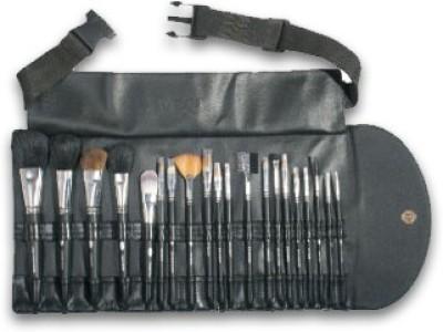 Vega Set of 20 Brushes