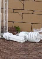 Eveready 27 W, 15 W B22 CFL Bulb