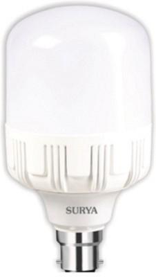 Surya B22 LED 18 W Bulb