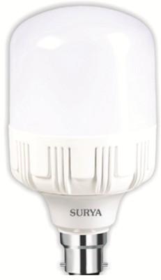 Surya B22 LED 15 W Bulb