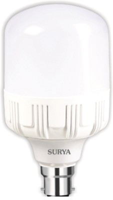 Surya B22 LED 20 W Bulb
