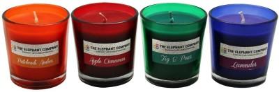 The Elephant Company Votives Jewel S/4 Candle