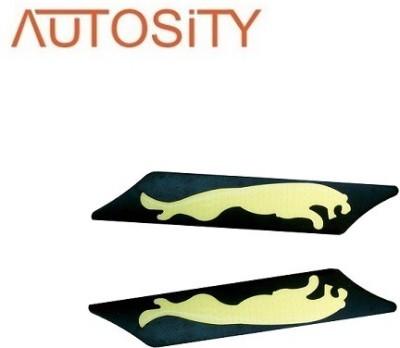 AUTOSiTY BP201, _Daytime Runing (Jaguar) Car Fancy Lights