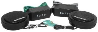 Woodman Dome Tweeter Ts20 Coaxial Car Speaker