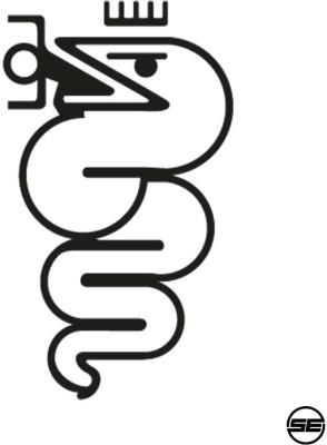 SE Racing Sticker for Bumper, Sides, Hood