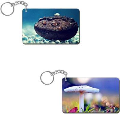 Lovely Collection Water Dew Drops Key Chain