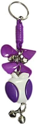 DCS Purple fancy keychain Locking Carabiner