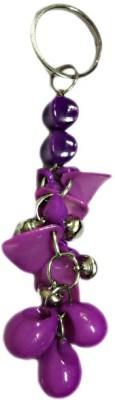 DCS Purple Fancy Beats Keychain Locking Carabiner