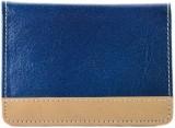 ALW 30 Card Holder (Set of 1, Blue)