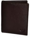 DHide Designs 10 Card Holder (Set of 1, ...