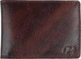 Hidemaxx 15 Card Holder (Set of 1, Brown...