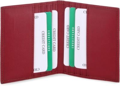 ALV 10 Card Holder